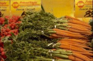 Carrots are the richest crop source of vitamin A in the American diet. Vitamin A is an essential nutrient. PHOTO COURTESY OF PHIL SIMON, UW–MADISON, USDA-ARS